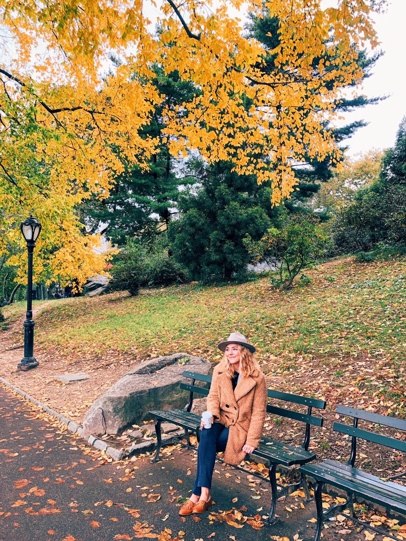 Central Park near The Loeb Boathouse