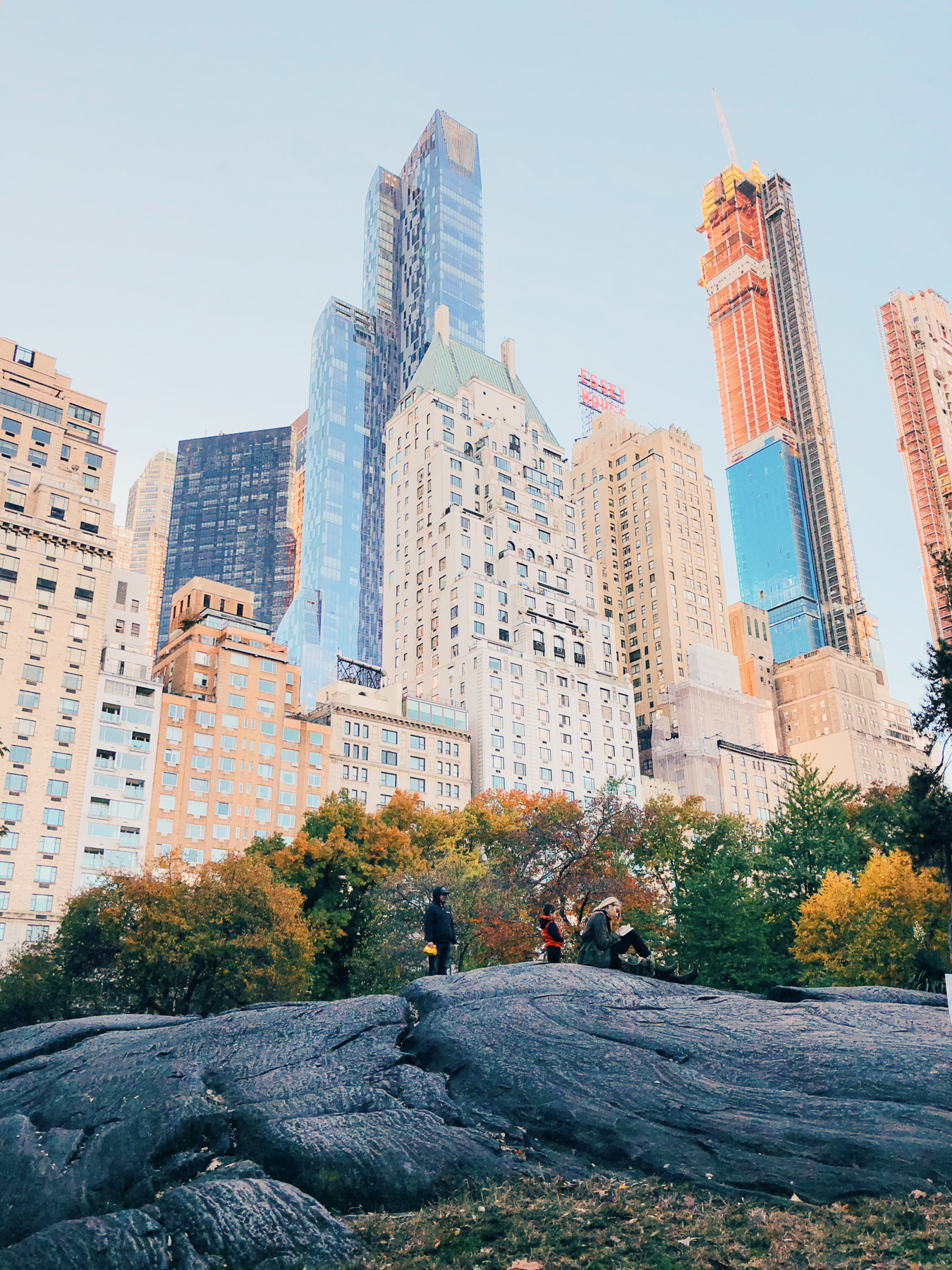 Central Park, near Cop Cot