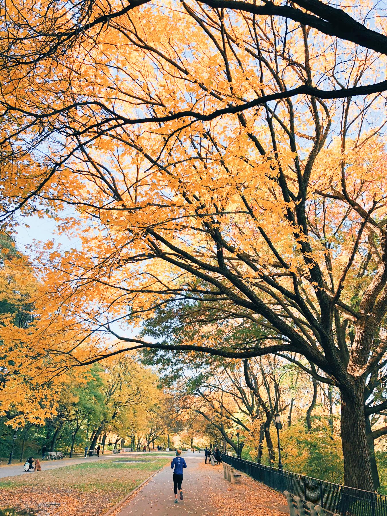 Me running in Riverside Park, Hudson River Greenway