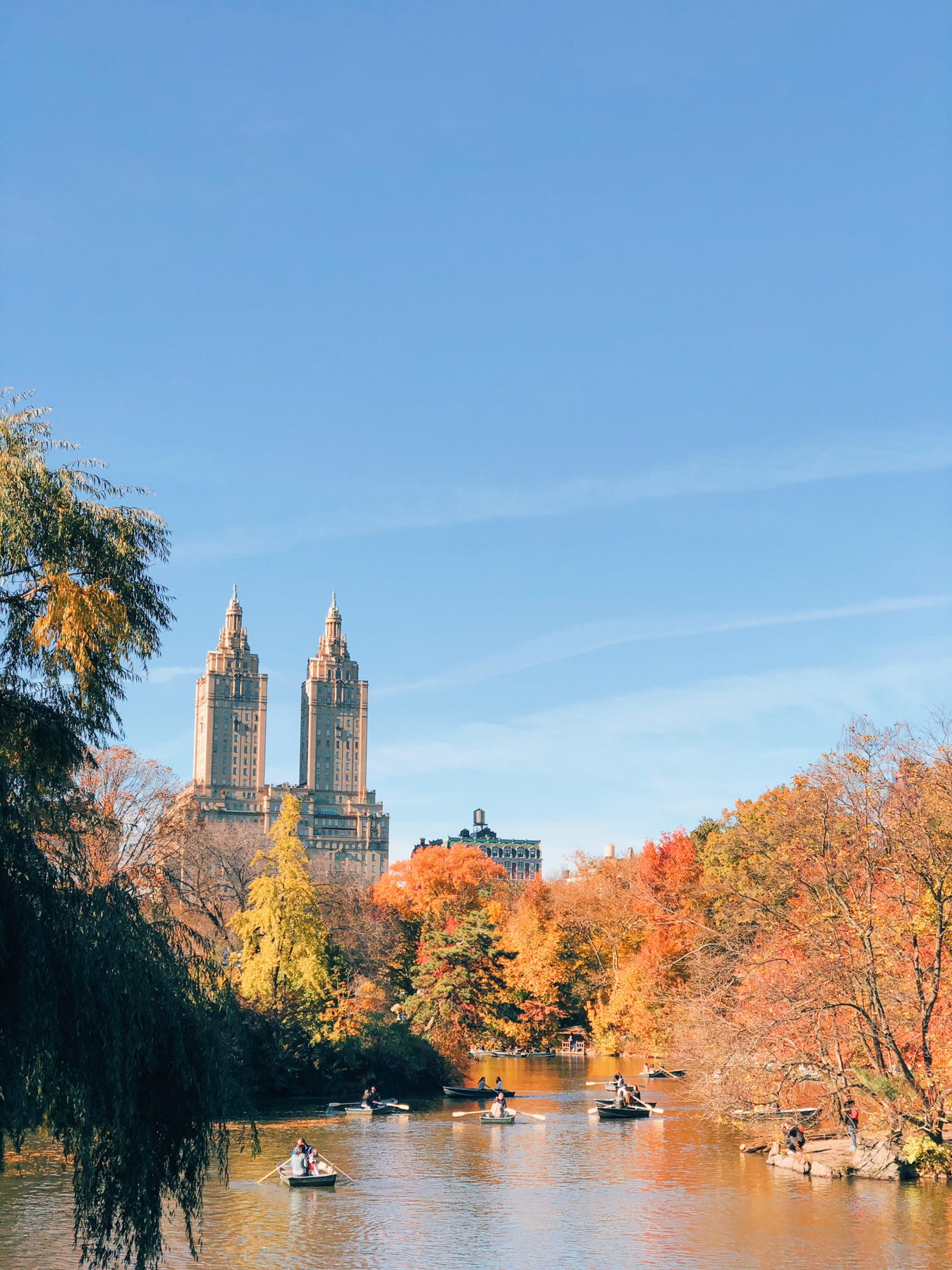 Central Park, view of The San Remo