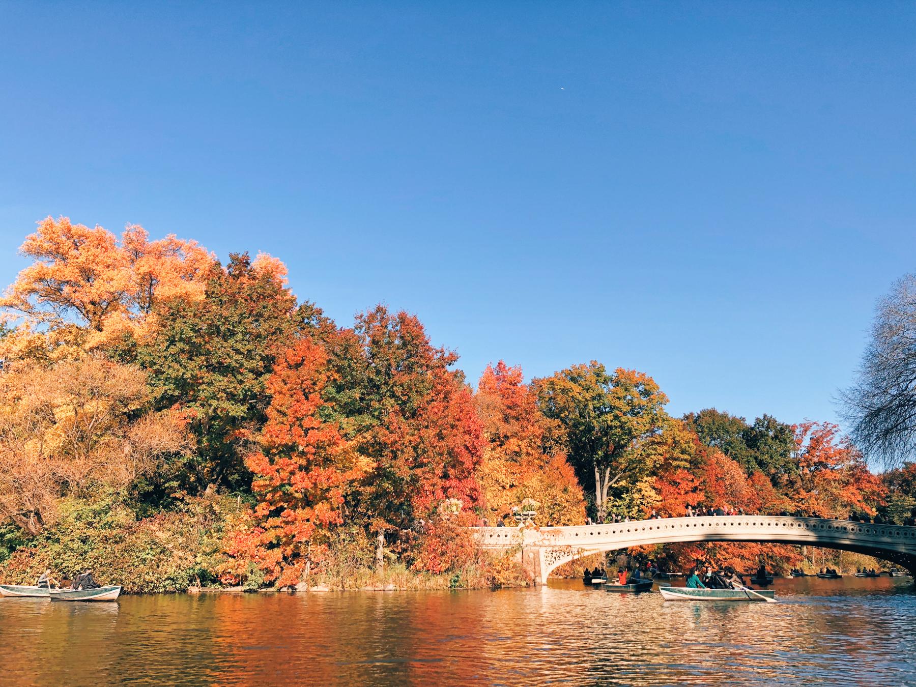 Central Park, Bow Bridge