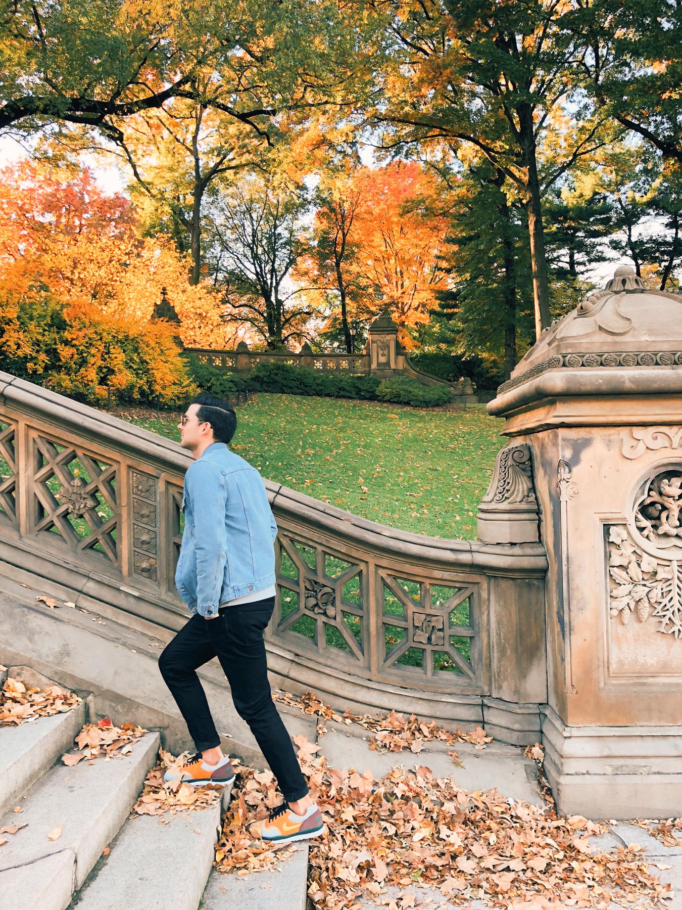 Central Park, Bathesda Fountain