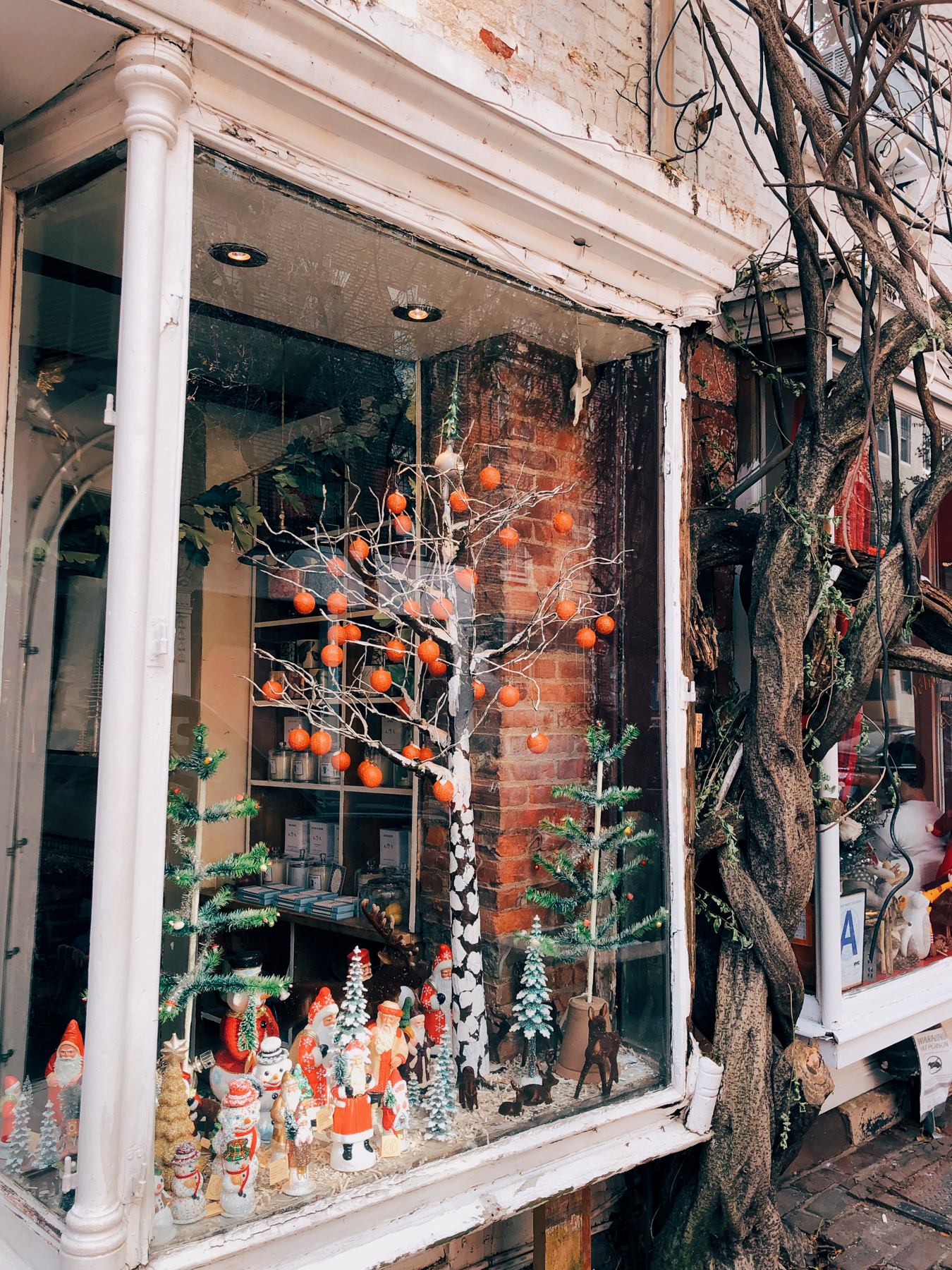 """John Derian West"" shop window on Christopher St"