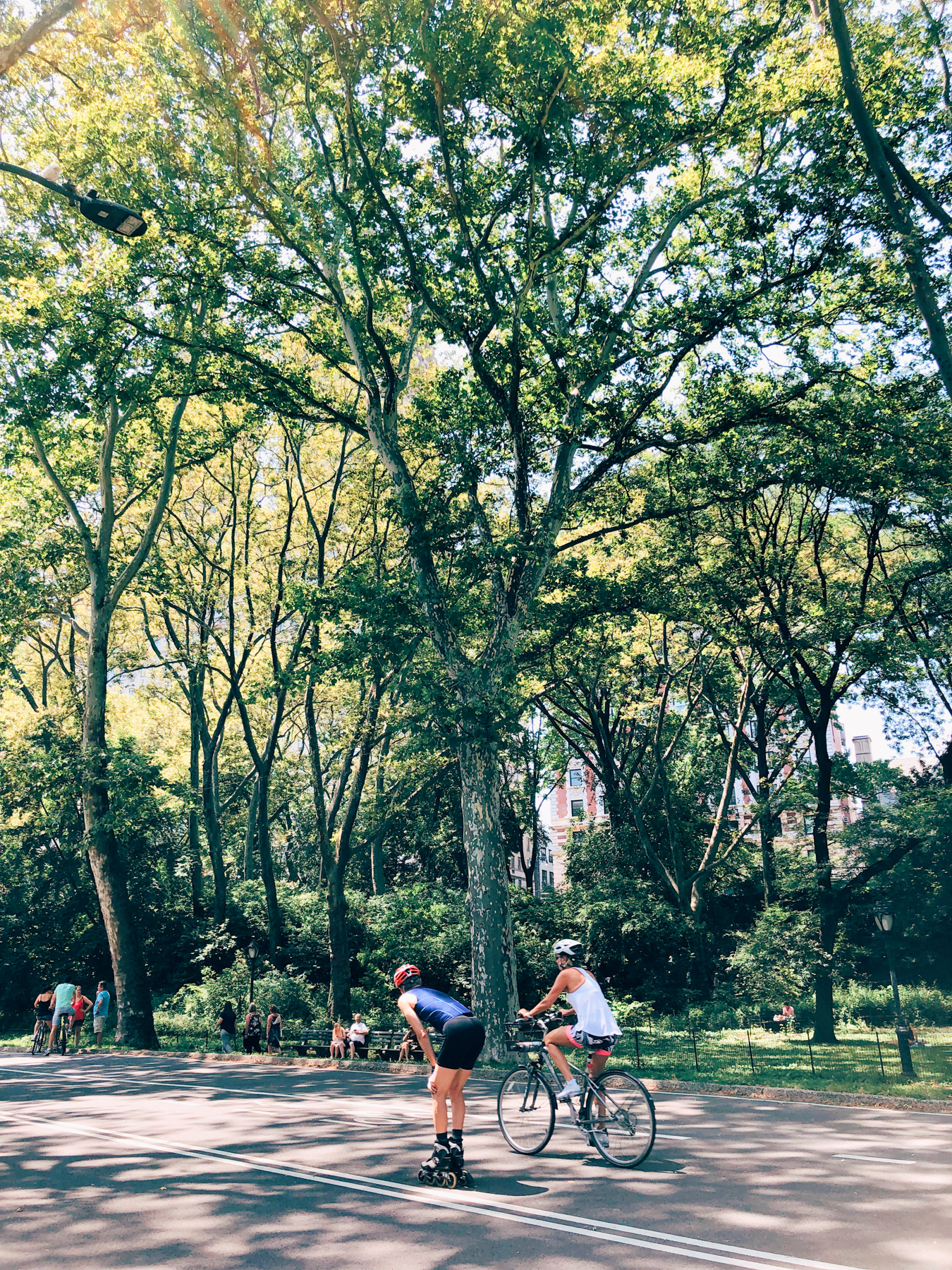 Bikers and Rollerbladers in Central Park