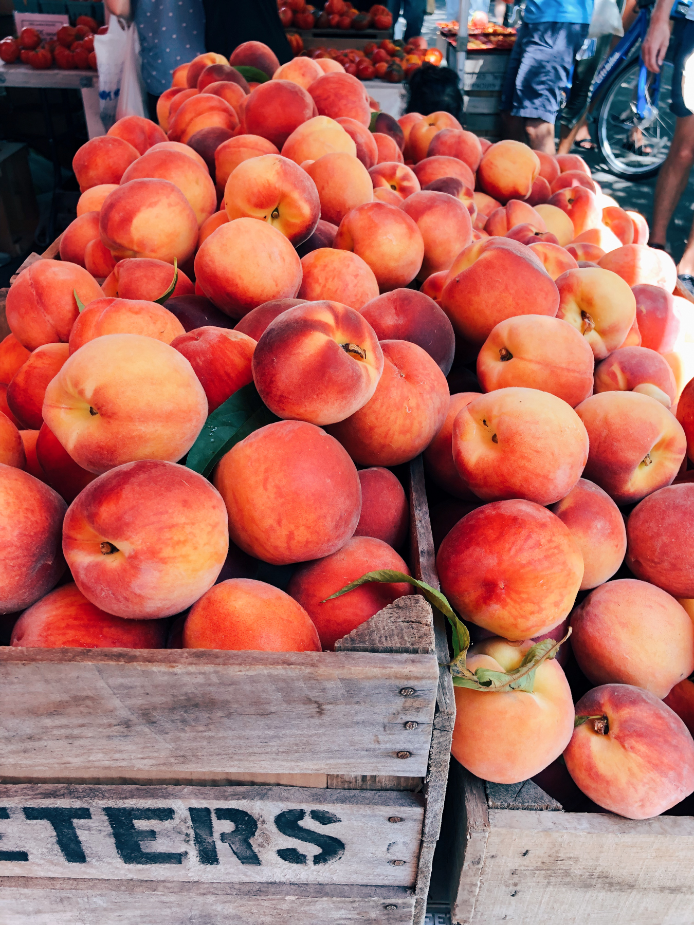 Fresh peaches at the 79th St. Greenmarket
