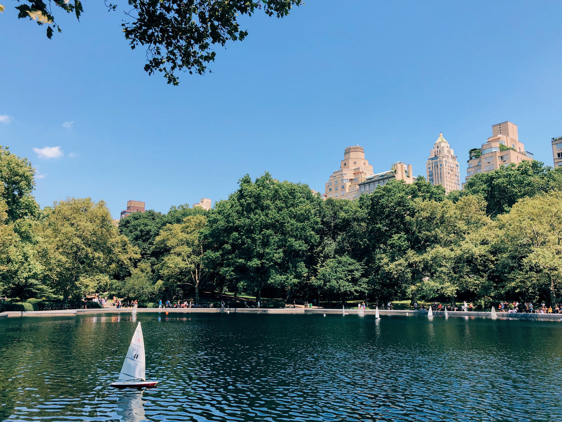 Mini sailboats at the Conservatory Water in Central Park
