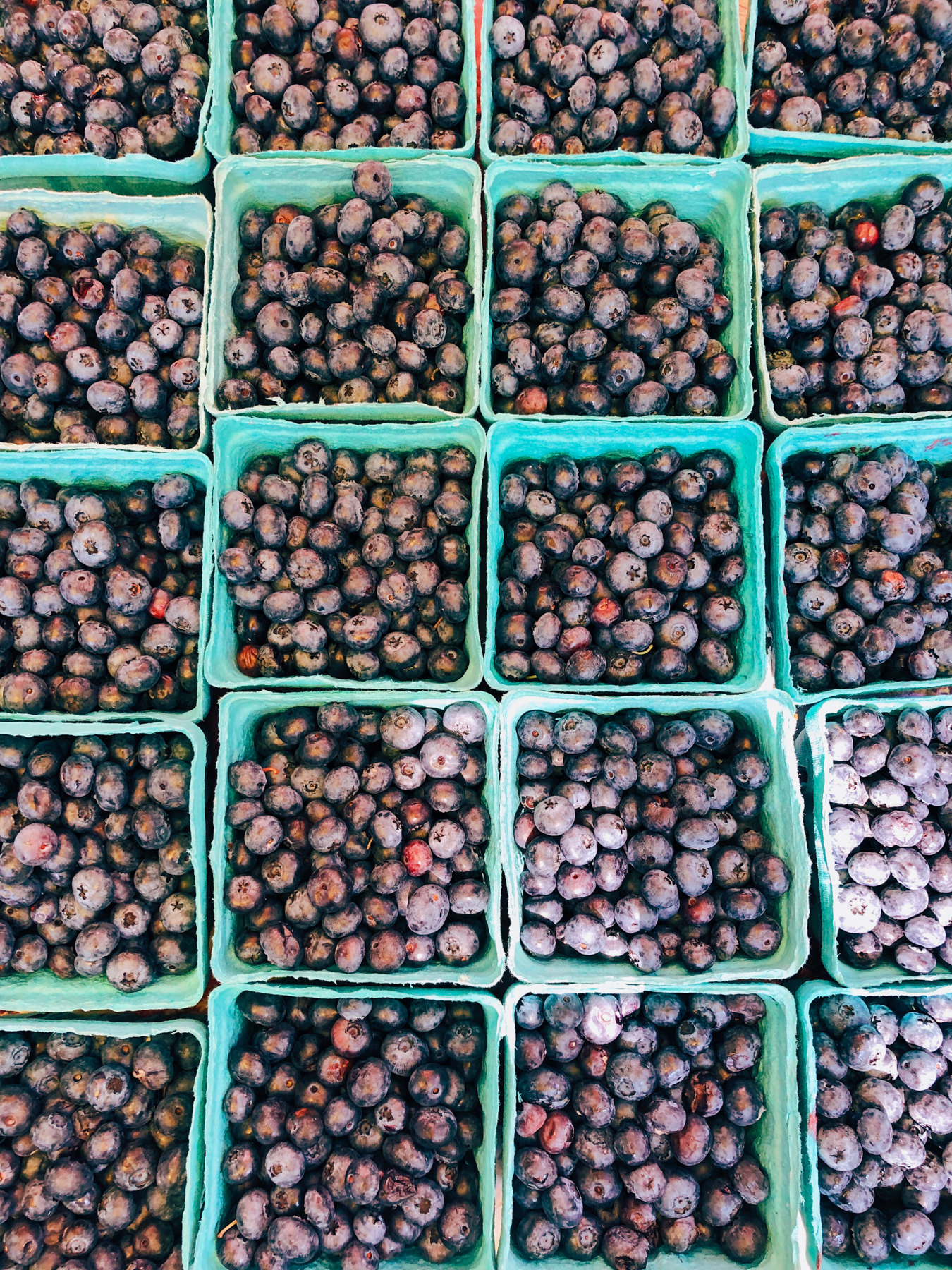 Fresh blueberries at the 79th St. Greenmarket