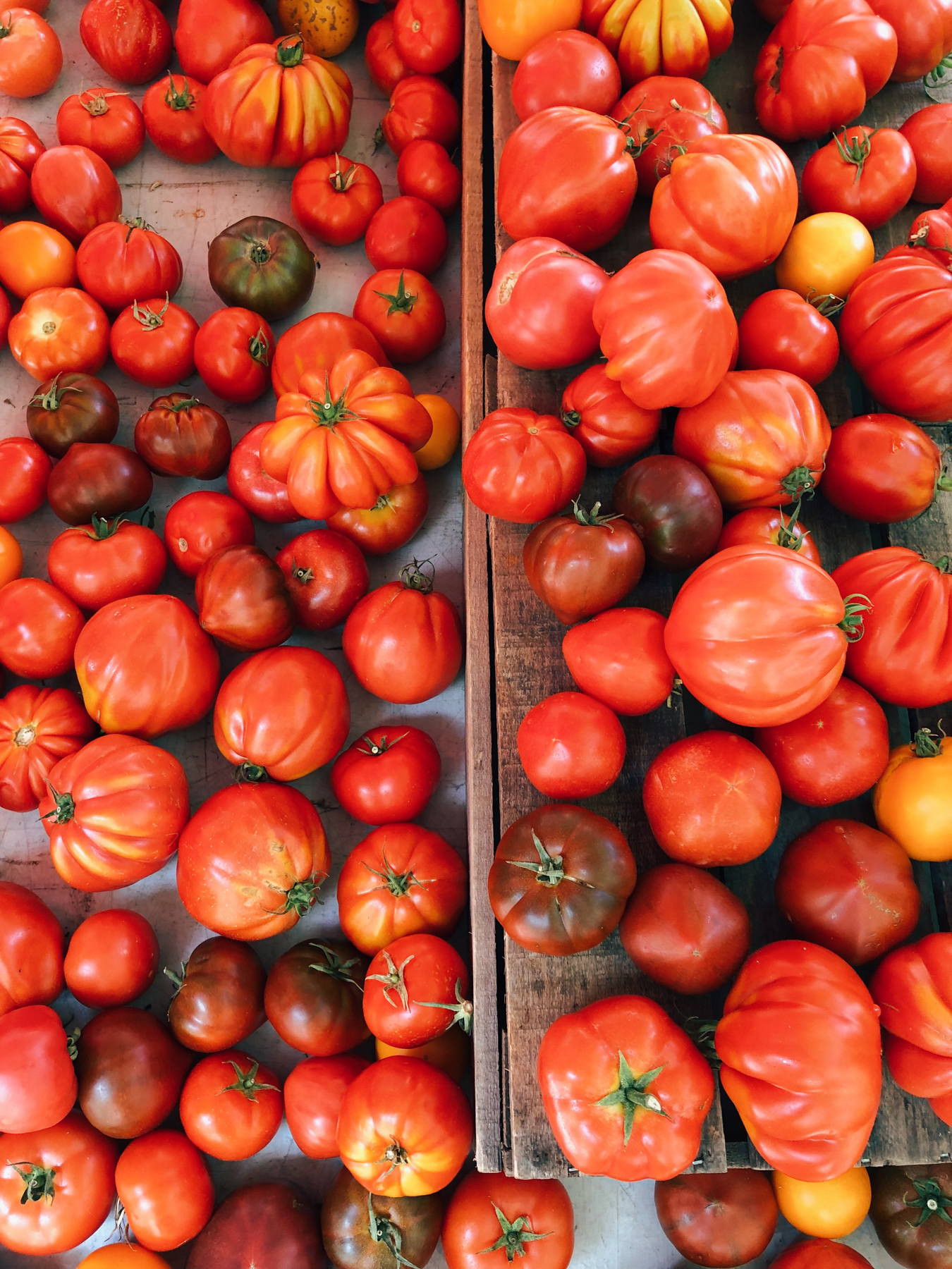 Organic tomatoes at the 79th St. Greenmarket