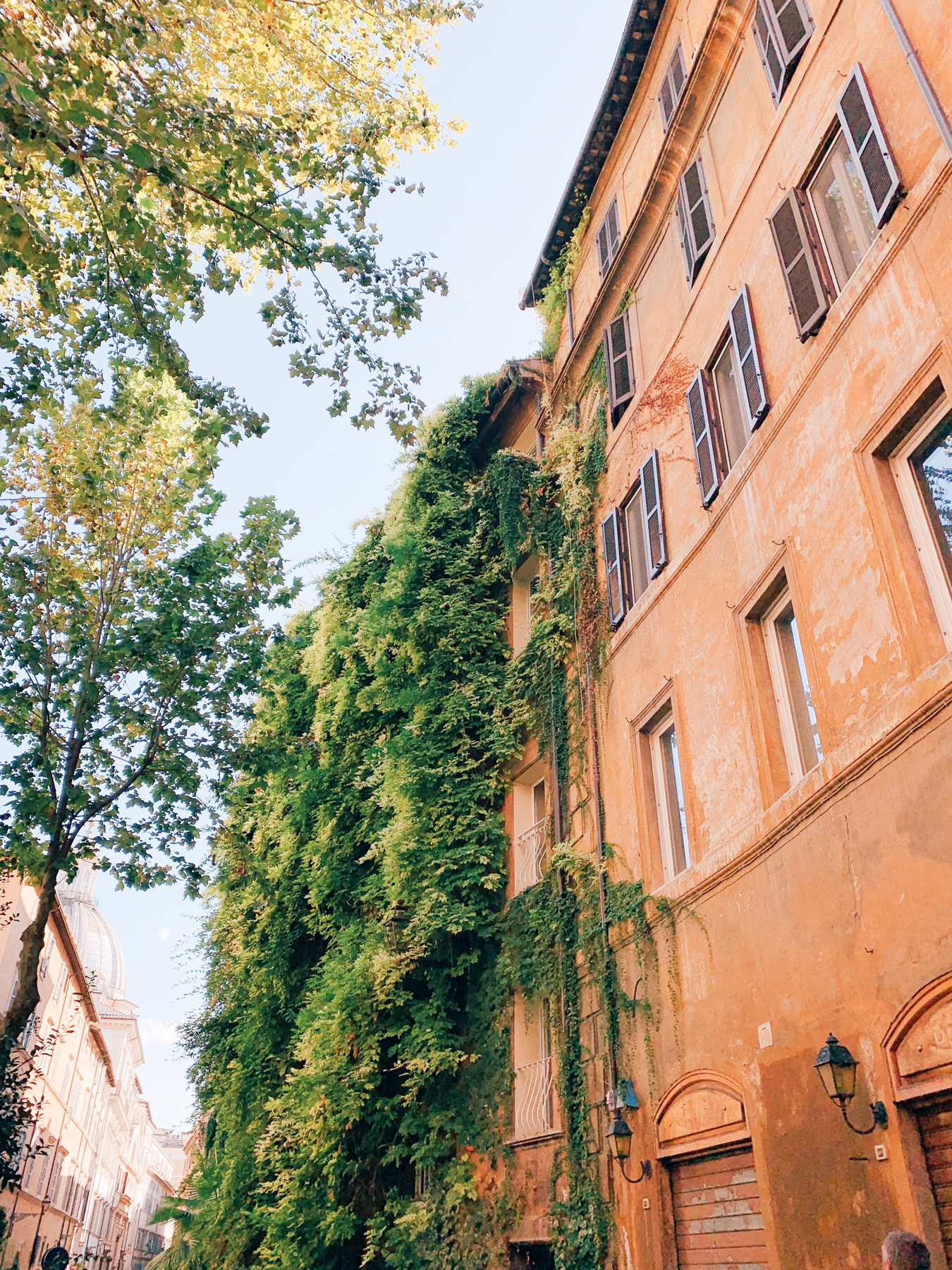 This ivy covered building is Hotel Raphael.
