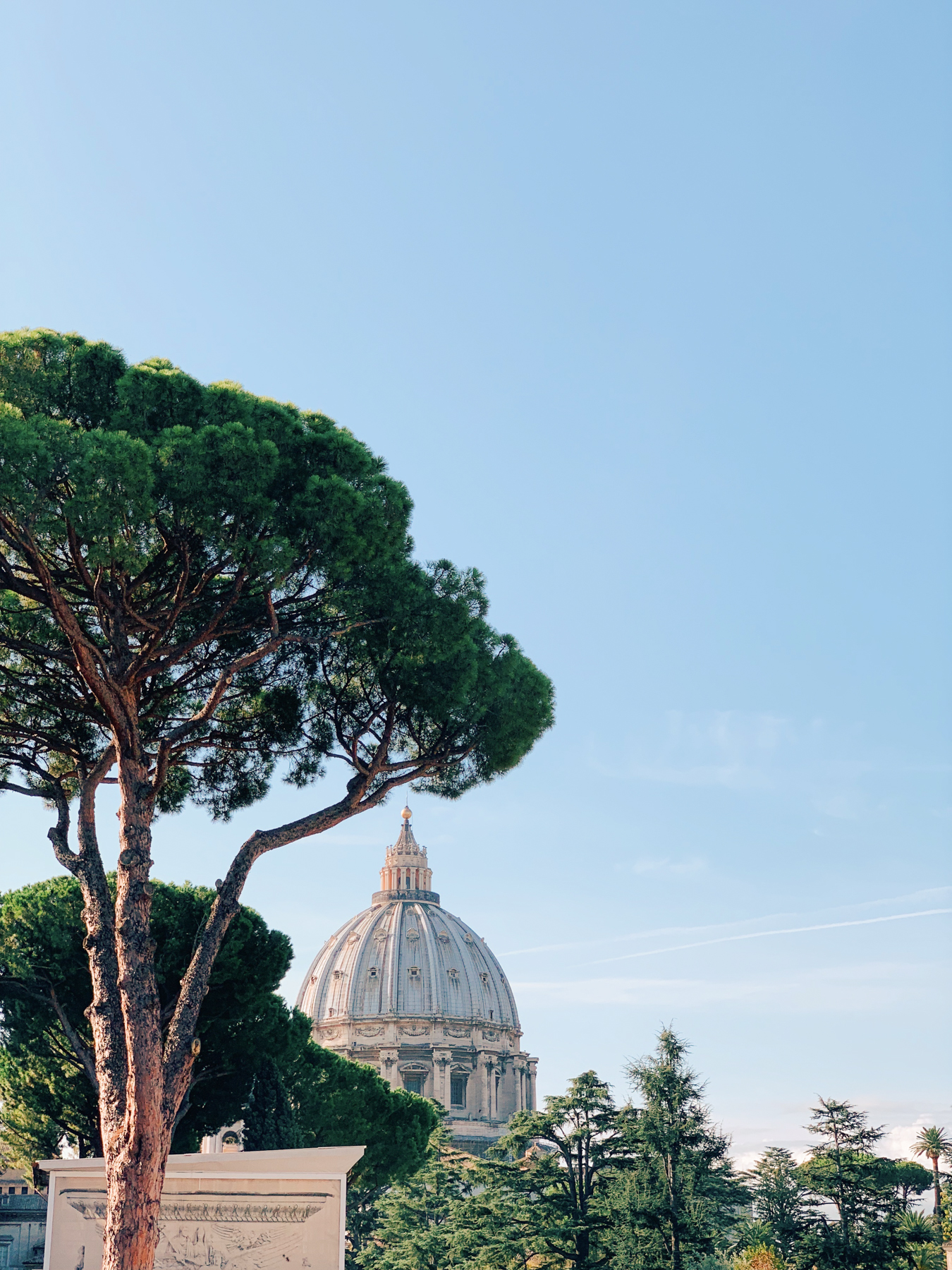 A view of St. Peter's Basilica from the Vatican Museum.