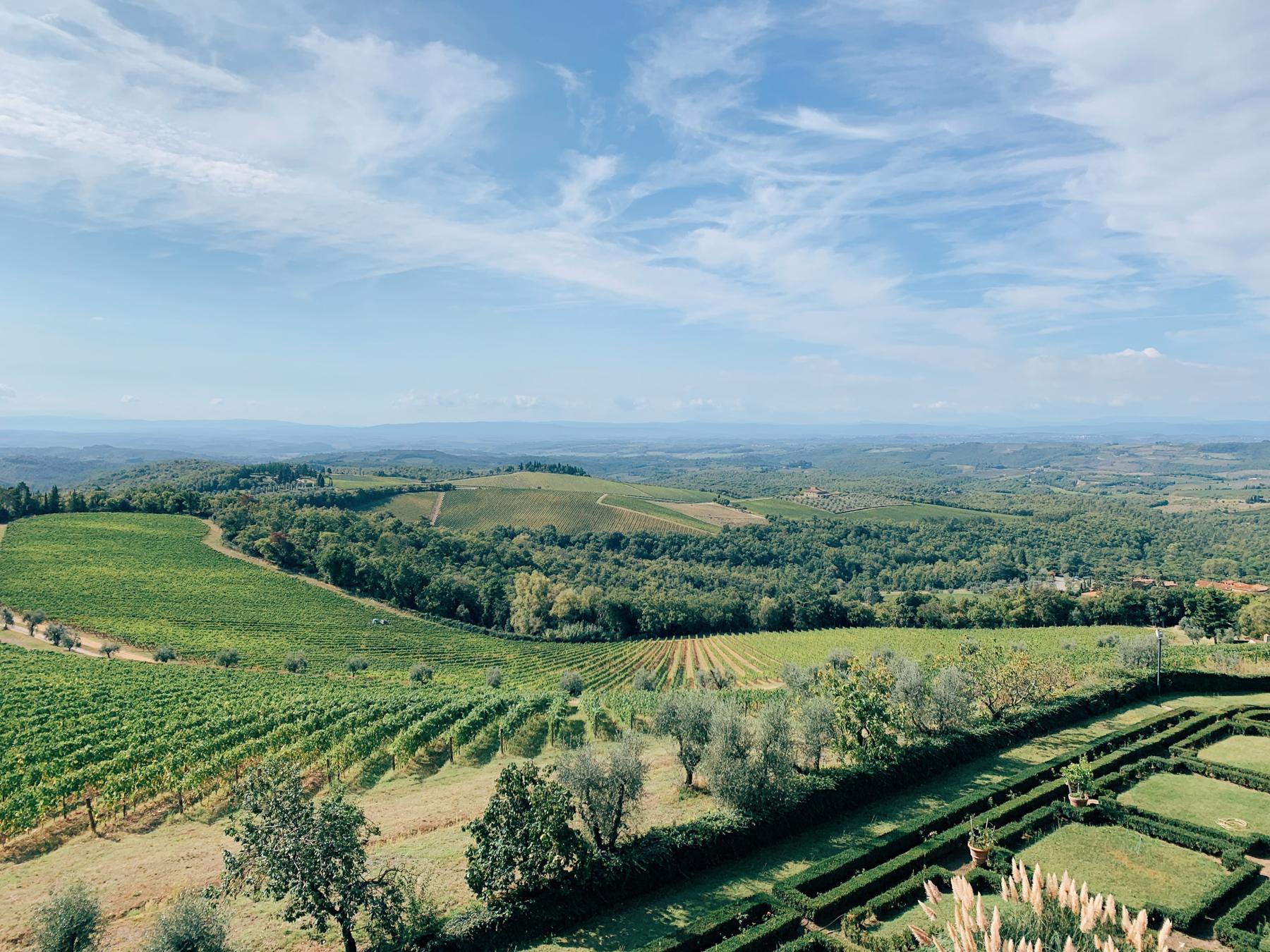 The view from Castello di Brolio.