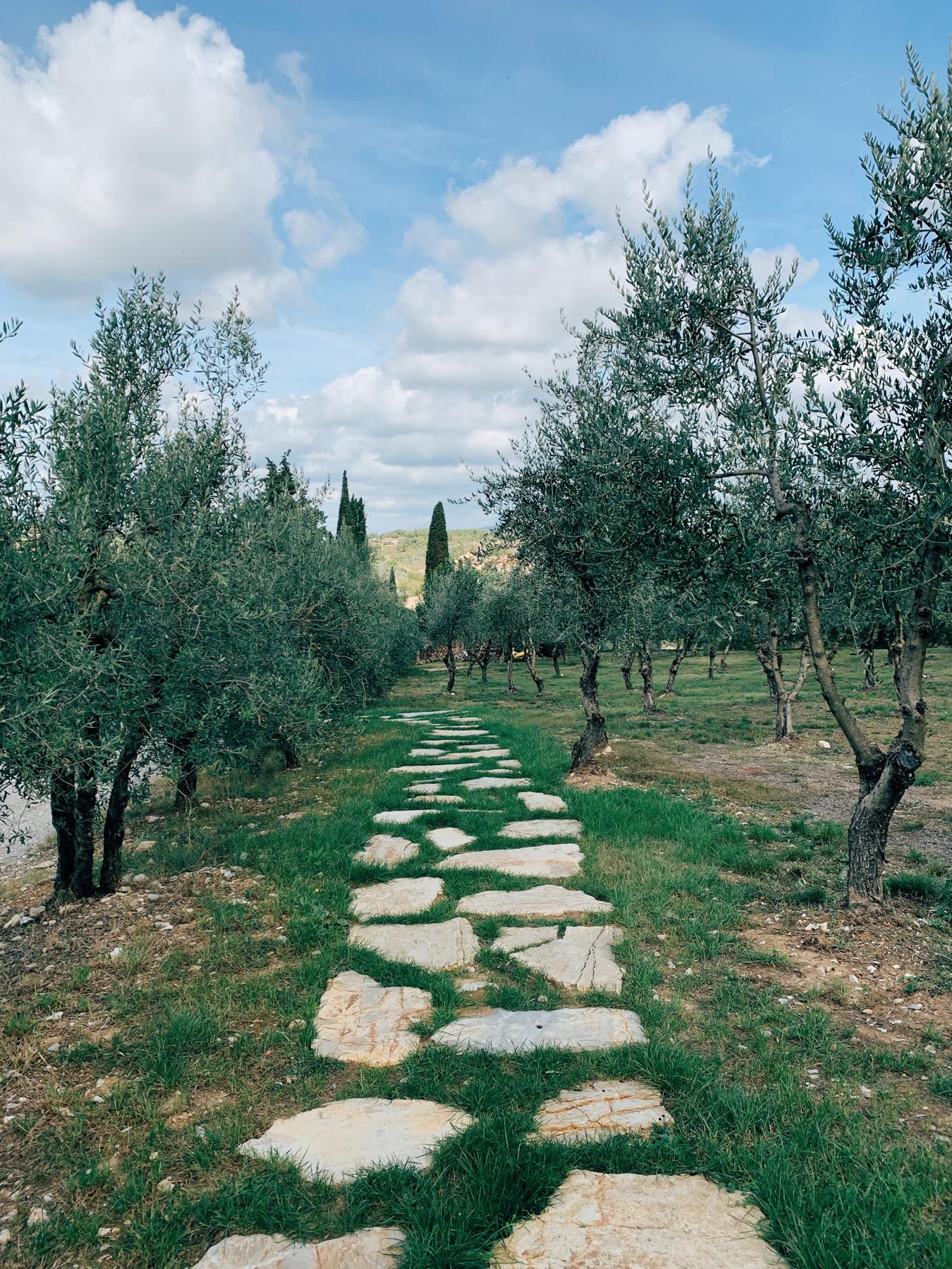 The path leading to the entrance of Castello di Ama.